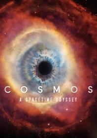 cosmos-a-space-time-odyssey-531e83340baf3